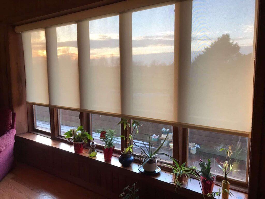 see through window shades